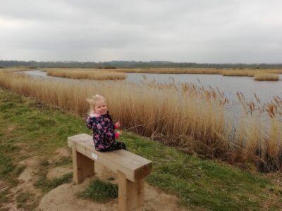 Canal walk, Methley, St Aiden's (5.5km)