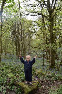 4km circular walk along Ilkley riverbank and through Middleton Woods