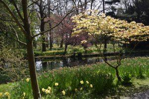 Thorp Perrow Arboretum, near Bedale