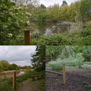 barlow-common-nature-trail