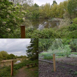 barlow-common-nature-trail