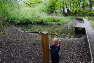Barlow Common Nature Trail, Selby