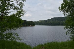 Damflask Reservoir walk with a great cafe stop! (3.5 miles)