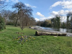 Five things to enjoy at Thornes Park, Wakefield
