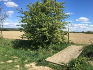A walk around the Methley Estate from Woodlesford.