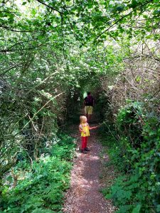 Heath-common-walk