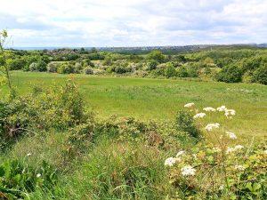 Goosehill-view