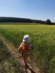 Family-walk-wakefield