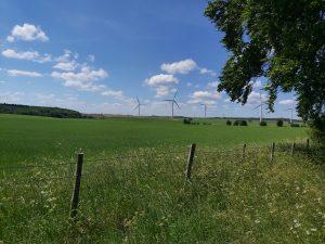 Lotherton-walk