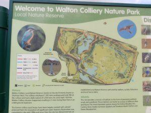 Walton-park