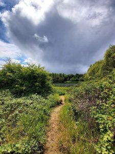 Walton-Nature-park