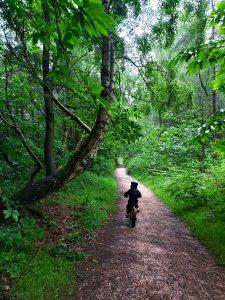 Sherwood-Pines-Family-bike