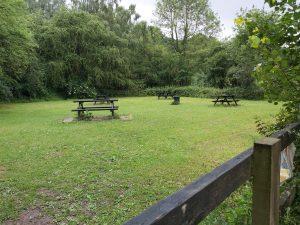 Meanwood-grove-picnic