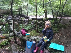 Meanwood-valley-trail