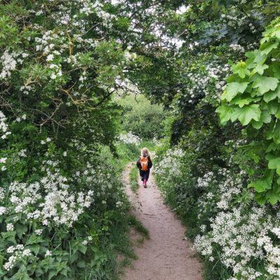 A family walk at Billy Wood, Kippax