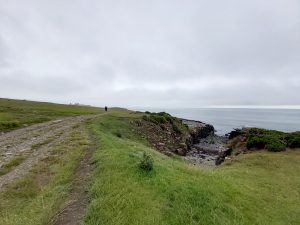 Walk-from-craster-to-dunstanburgh