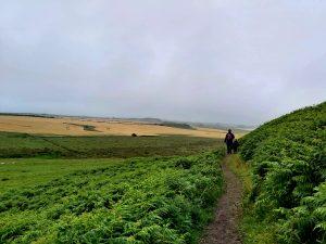 Dunstanburgh-castle-walk