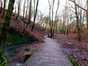 Gorge-walk
