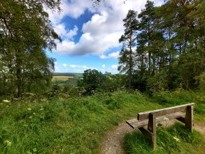dalby-forest