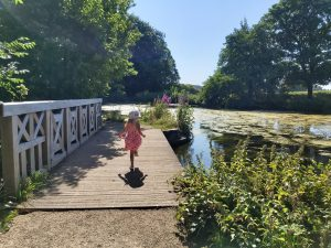 Adventure Trail in Roundhay Park