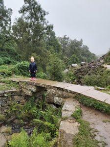 Bronte Falls Circular Walk