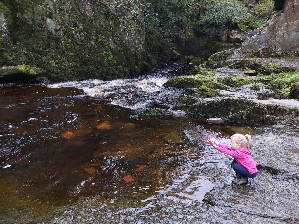 Ingleton-falls-Trail