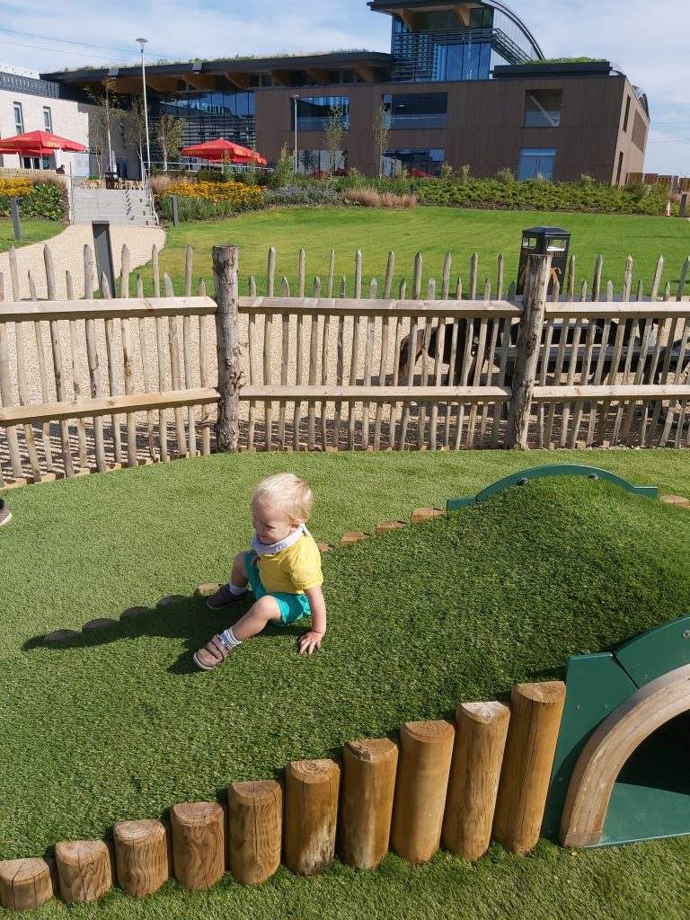 Skelton-Lane-play-area