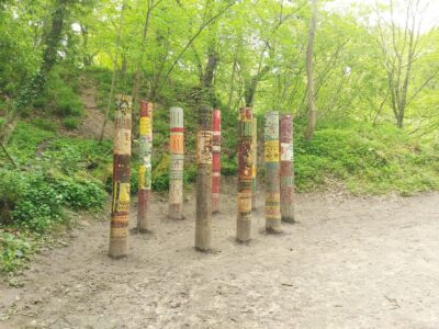 Plessey Woods,  Northumberland