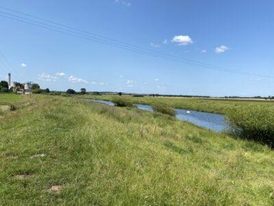 Barmby on the Marsh Circular Walk